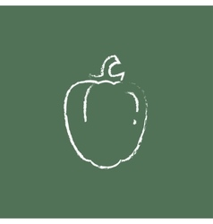 Bell pepper icon drawn in chalk vector