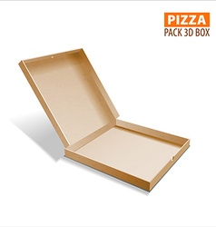 Pizza box packing vector