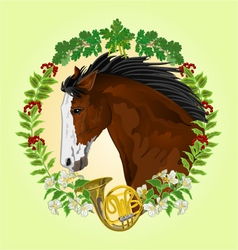 Dark brown horse head of stallion vector