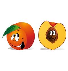 peach cartoon vector image vector image