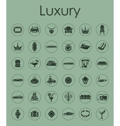 Set of luxury simple icons vector