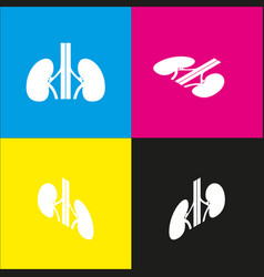 Human anatomy kidneys sign  white icon vector