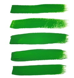 Green ink brush strokes vector