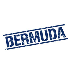 Bermuda blue square stamp vector