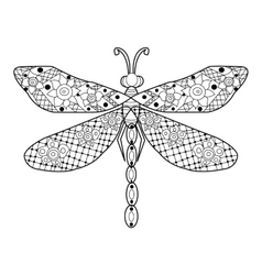 Dragonfly coloring for adults vector image vector image