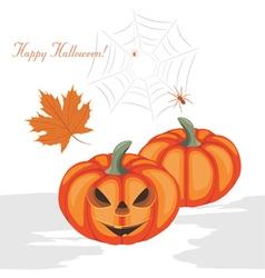 Halloween pumpkins and spiders vector image