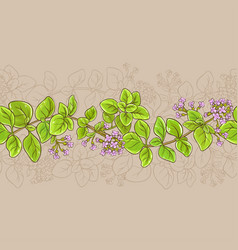 oregano pattern vector image
