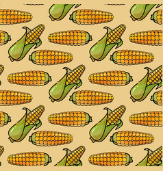 seamless pattern with corn background in vector image vector image