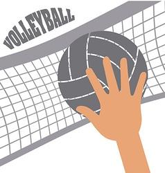 Volleyball sport vector
