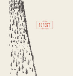 Vertical pine forest drawn sketch vector