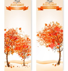 Two abstract autumn backgrounds vector