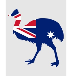 Kassowary Australia vector image vector image