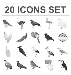 Types of birds monochrome icons in set collection vector