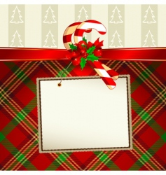 Christmas decoration with tag vector image vector image