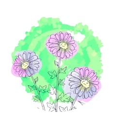 Daisy flowers floral set of ink drawing vector