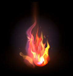 isolated realistic orange and red fire flame on a vector image vector image