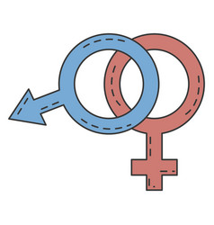 male and female symbol vector image