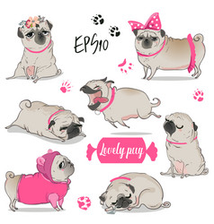set with cute cartoon pug vector image