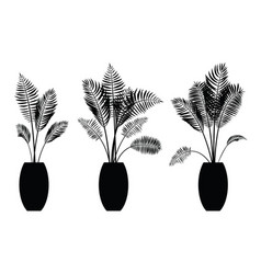 Interior palm trees silhouette on the pot vector