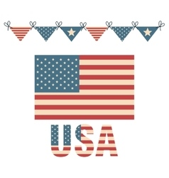 Flag united states america design vector