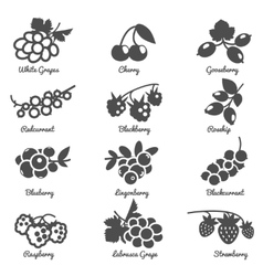 Berries flat icons set vector