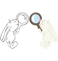 rabbit and magnifier vector image