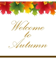 Autumn banner from maple leaves with text vector
