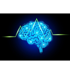 brain with wave vector image vector image