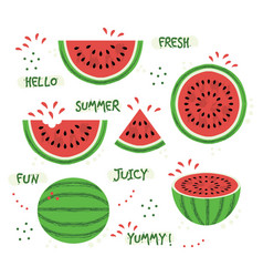 green and red whole and sliced watermelon set vector image vector image