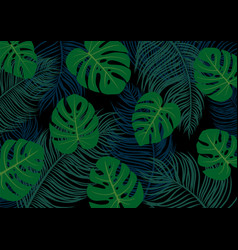 palm and monstera deliciosa leaves vector image vector image