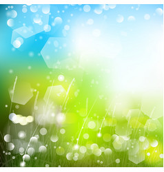 Abstract defocused bokeh lights nature spring vector