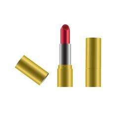 Lipstick beauty salon cosmetics vector