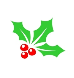 Holly berry color simple icon vector image