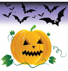 Halloween pumpkin and night bats vector