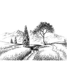 field landscape pencil drawing vector image vector image