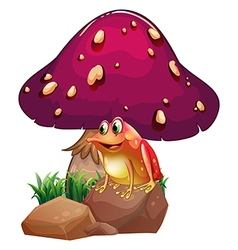 A frog below the giant mushroom vector