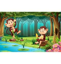 Monkeys living in the jungle vector image