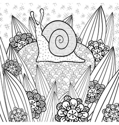 Cute snail adult coloring book page vector