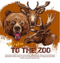 Zoo animal banner with sketched bear dear and elk vector