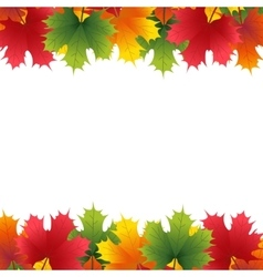 Autumn maple leaf on a white background vector