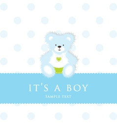 Baby Boy Teddy Card vector image