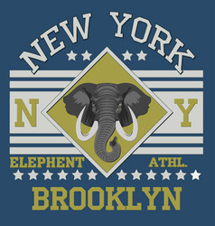 New york brooklyn sport vector