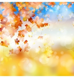 Autumn background with maple leaves EPS 10 vector image