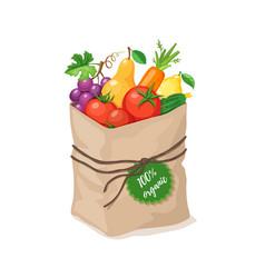 Grocery paper bag vector