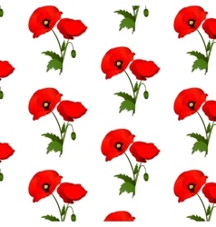 Seamless pattern with poppies flowers vector