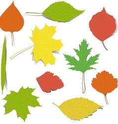 Autumn elements for design vector image