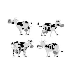 Cartoon cow characters vector