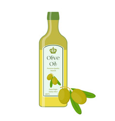 Olive oilbottle of natural oilbranch with olives vector