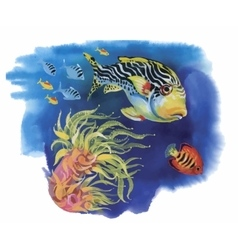 Watercolor marine life background with tropical vector