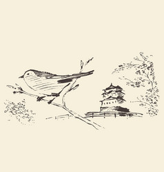 oriental sakura bird drawn sketch vector image
